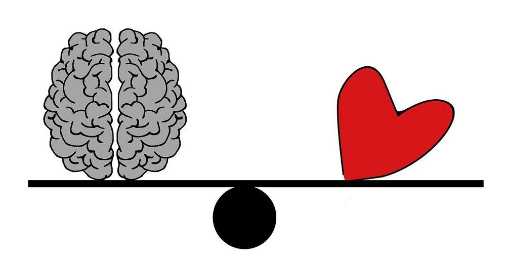 Como funciona el cerebro emocionalmente